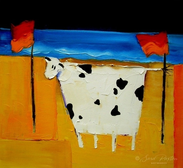 Cow Between the Flags
