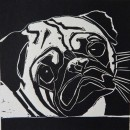 Pug - Ink-Print - close up - Sara Paxton Artworks