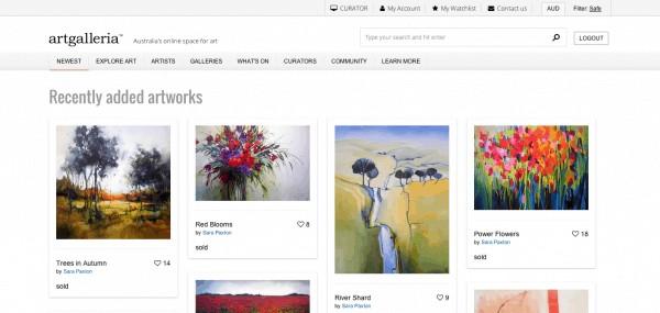 New Art Website, Art Galleria